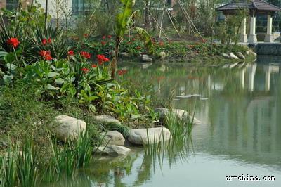 景觀水體維護和修復 從前期設計做起