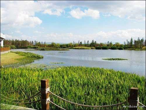 下一步,官渡区还将拓展还林还湿和生态景观建设工作,在滇池宝丰半岛