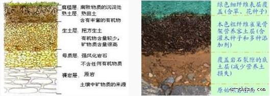 土壤改良技术_土壤改良技术 - 中国生态修复网