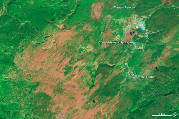 美国黄石国家公园生态系统恢复