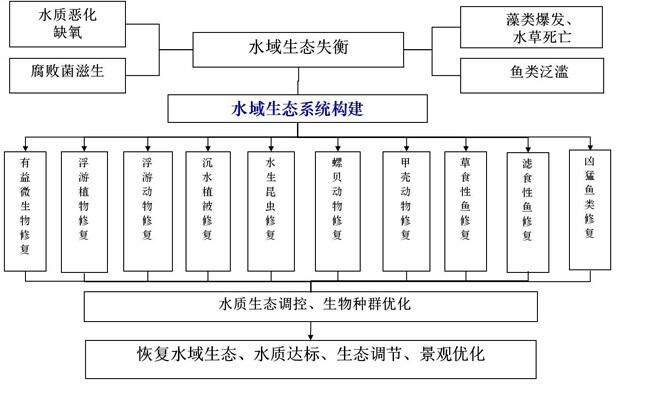 动植物结构层次图