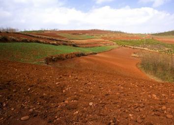 土壤污染防治法草案三审:扎实推进净土保卫战