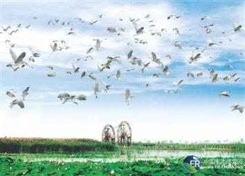 观察云南省抚仙湖山水林田湖草生态保护修复